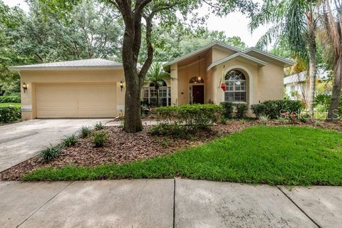 Photo of 9302 Knightsbridge Ct, Tampa, FL 33647