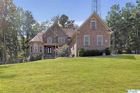 Phenomenal Madison County Al Real Estate Homes For Sale Realtor Com Download Free Architecture Designs Ferenbritishbridgeorg