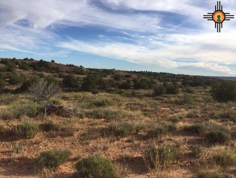 Photo of 74 Sunset Pl, Fort Sumner, NM 88119