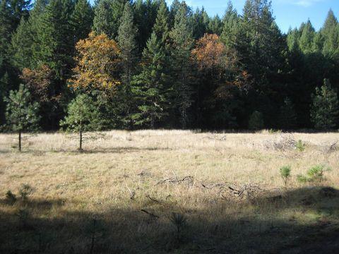 160 A Bluff Creek Rd, Zenia, CA 95595