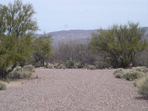 Photo of 4780 S Jumping Cactus Rd, Winkelman, AZ 85192