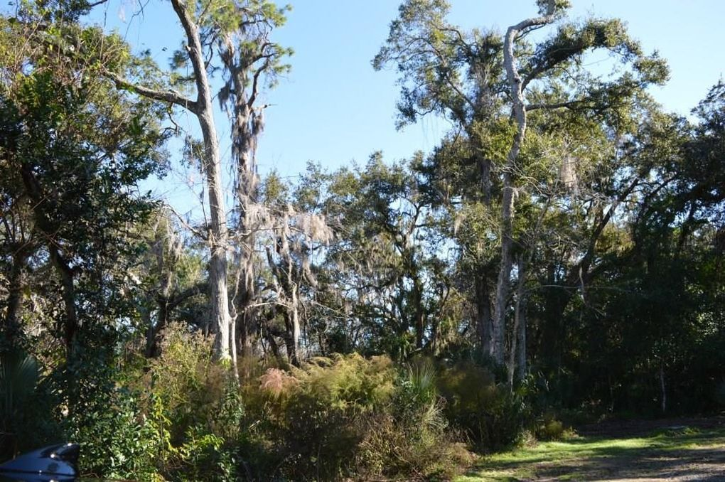 130 Sea Marsh Rd Amelia Island FL Land For Sale and Real