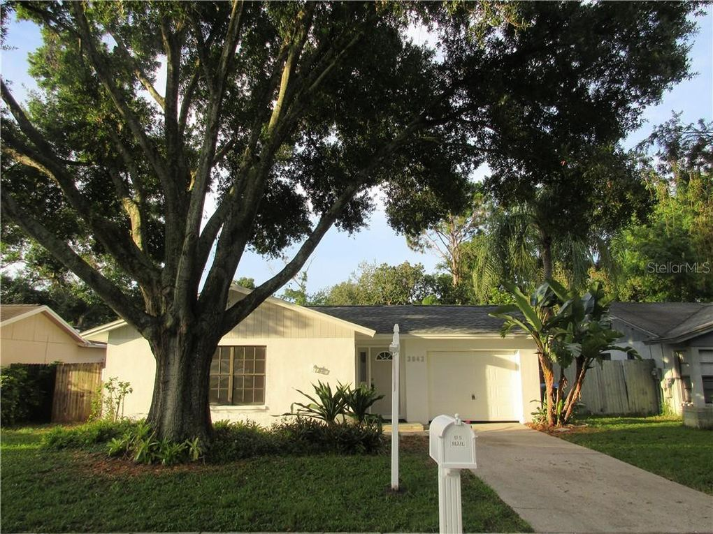 3042 Cypress Green Dr Palm Harbor, FL 34684