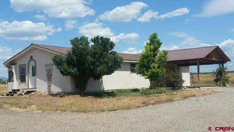 Admirable 355 Quarter Horse Rd Durango Co 81303 Home Interior And Landscaping Fragforummapetitesourisinfo