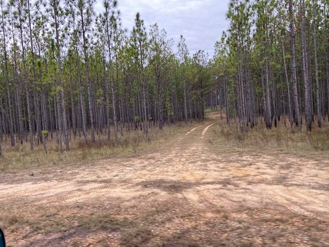 312J Forest Service Rd Brewton, AL 36000