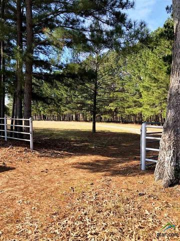 Photo of 3840 County Road 3230, Quitman, TX 75783