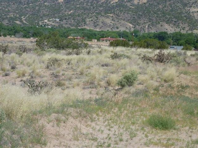 Tract C C-1-A-1-A of Cottonwood Los Luceros, NM 87582