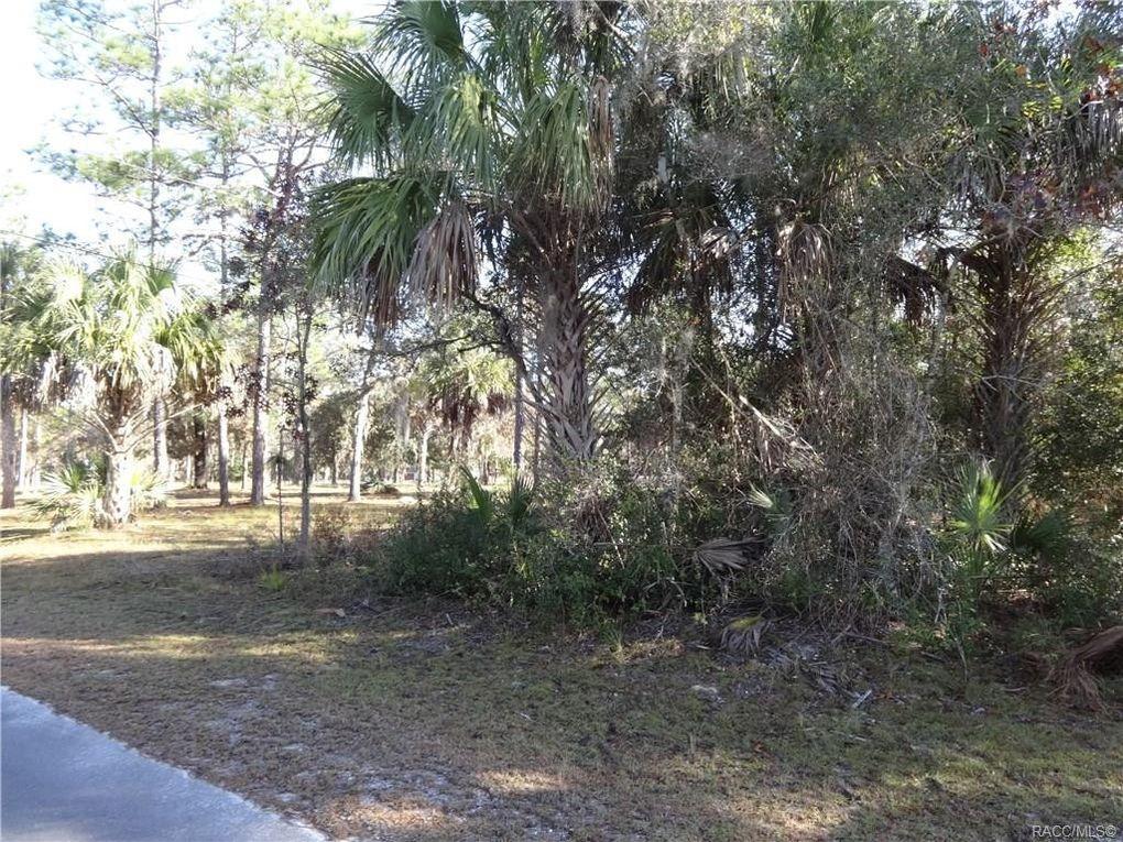 1377 S Candlenut Ave, Homosassa, FL 34448
