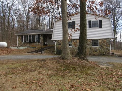 141 S Mountain Rd, Robesonia, PA 19551