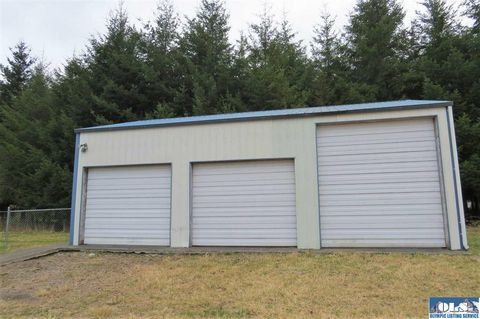 Photo of 491 Two Cousins Dr, Forks, WA 98331