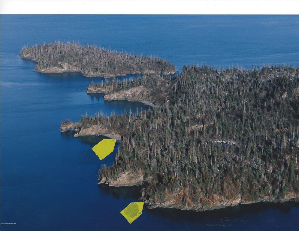 L1 Bear Cove Moorage Park, Remote, AK 99603