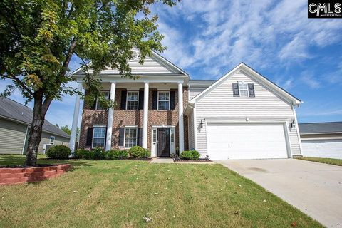 817 Wingstipe Ct, Columbia, SC 29229