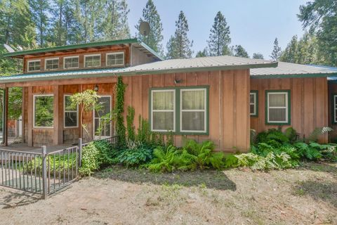 17548 State Highway 49, Camptonville, CA 95922