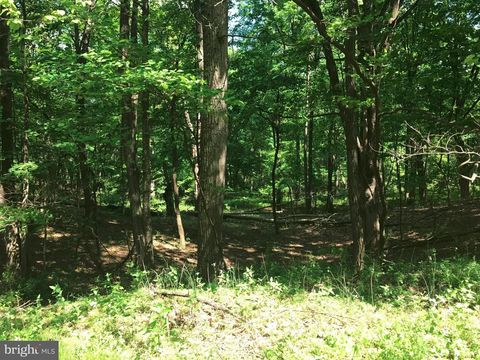 Off Of Timberline Dr, Lost River, WV 26810