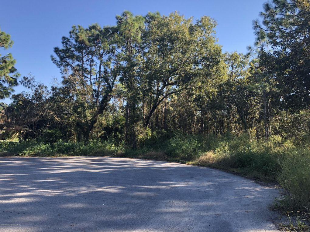 Oak Manor Ct, Spring Hill, FL 34604