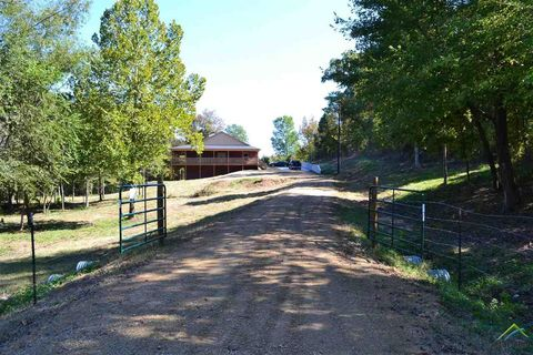 Photo of 1018 Fm 1647, Winnsboro, TX 75494
