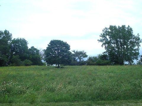 62 Lake Wildwood Dr, Varna, IL 61375
