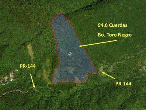 638 Sector Las Piedras, Ciales, PR 00638