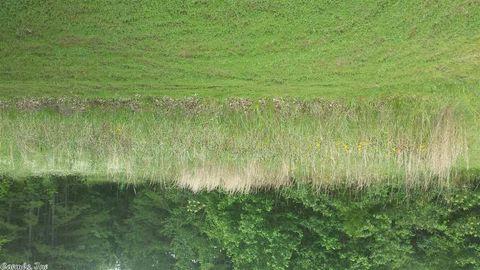 Photo of Menifee, AR 72107