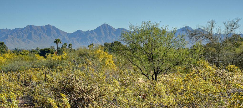 7815 N Ironwood Dr Paradise Valley, AZ 85253