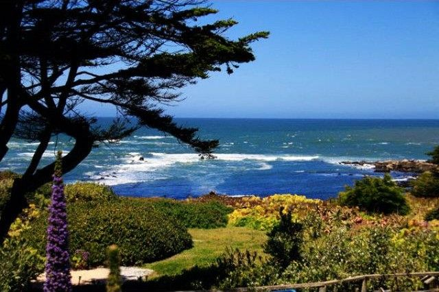 moss beach singles 7 single family homes for sale in moss beach ca view pictures of homes, review sales history, and use our detailed filters to find the perfect place.