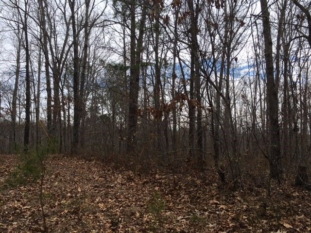 County 14 Rd Parcel 2, Muscadine, AL 36269