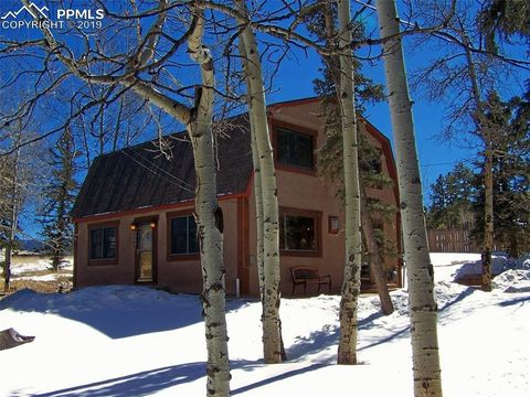 Photo of 654 Will Scarlet Dr, Divide, CO 80814