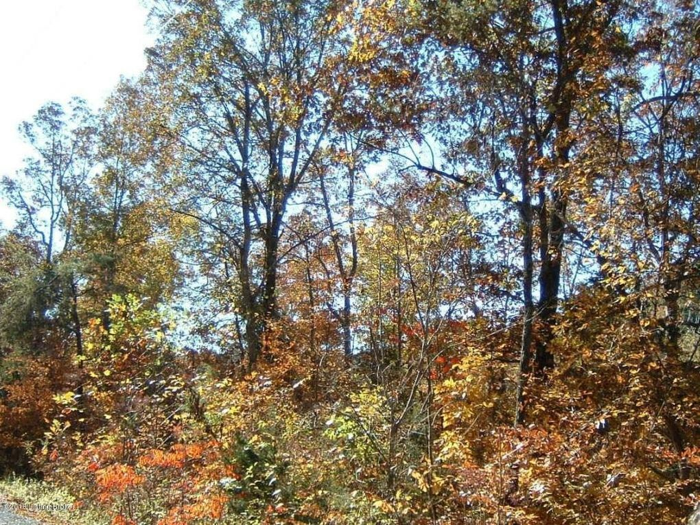 86 Blueberry Hill Rd, Bee Spring, KY 42207