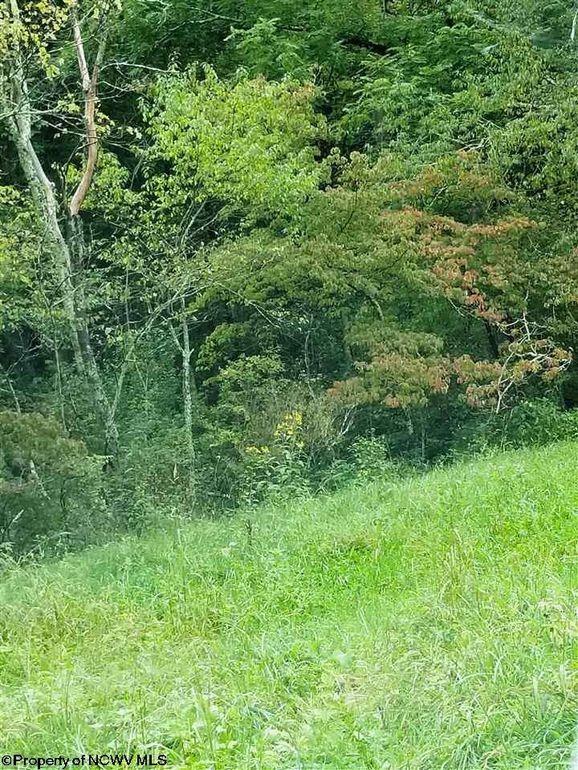 Grubbs Run Rd French Creek, WV 26218