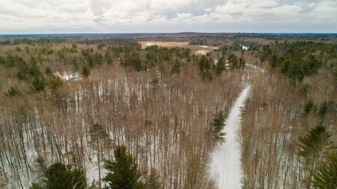 Tract C Red Fox Ln, Fifty Lakes, MN 56448
