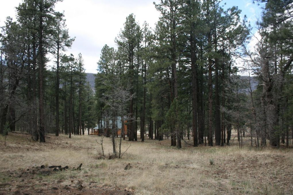54 county road n2280 nutrioso az 85932 land for sale and real estate listing