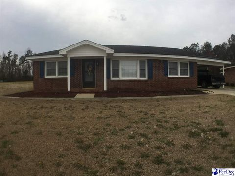 Photo of 1823 Old River Rd, Fork, SC 29543