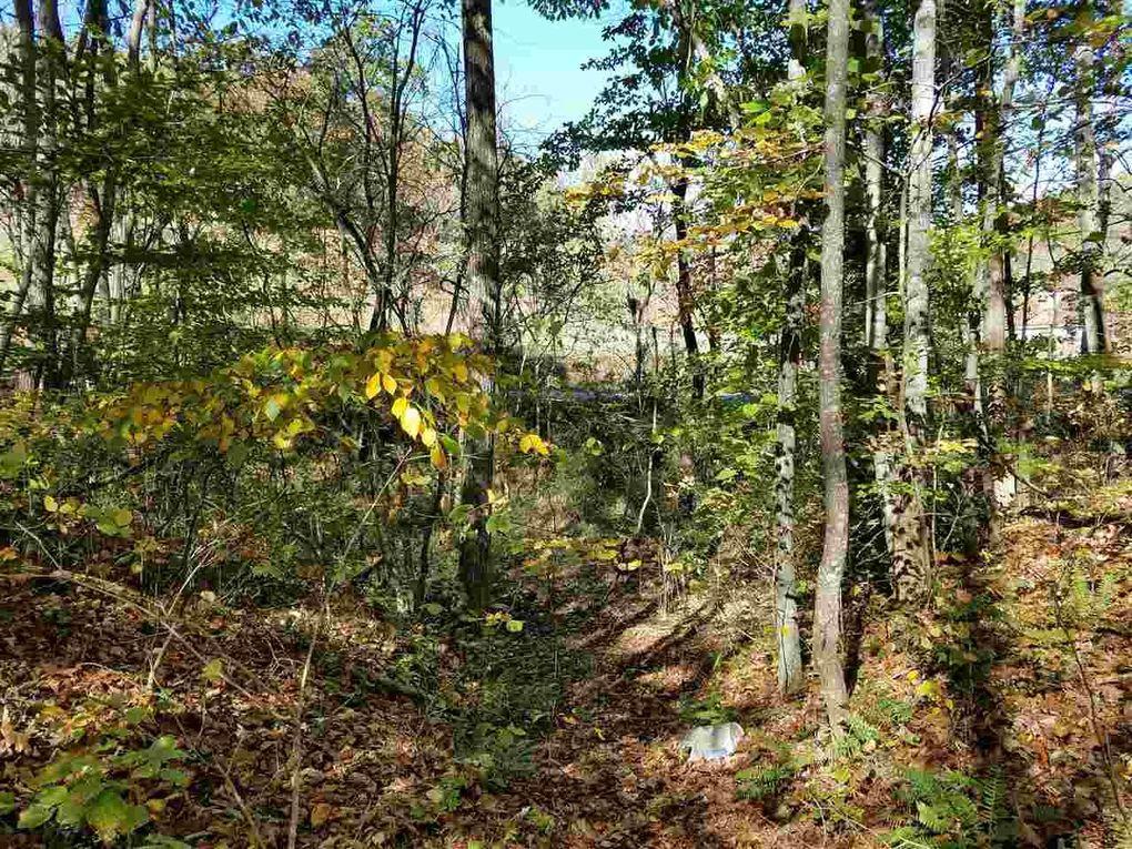 4 Acres Rackum Rd Thorn Hill Tn 37881