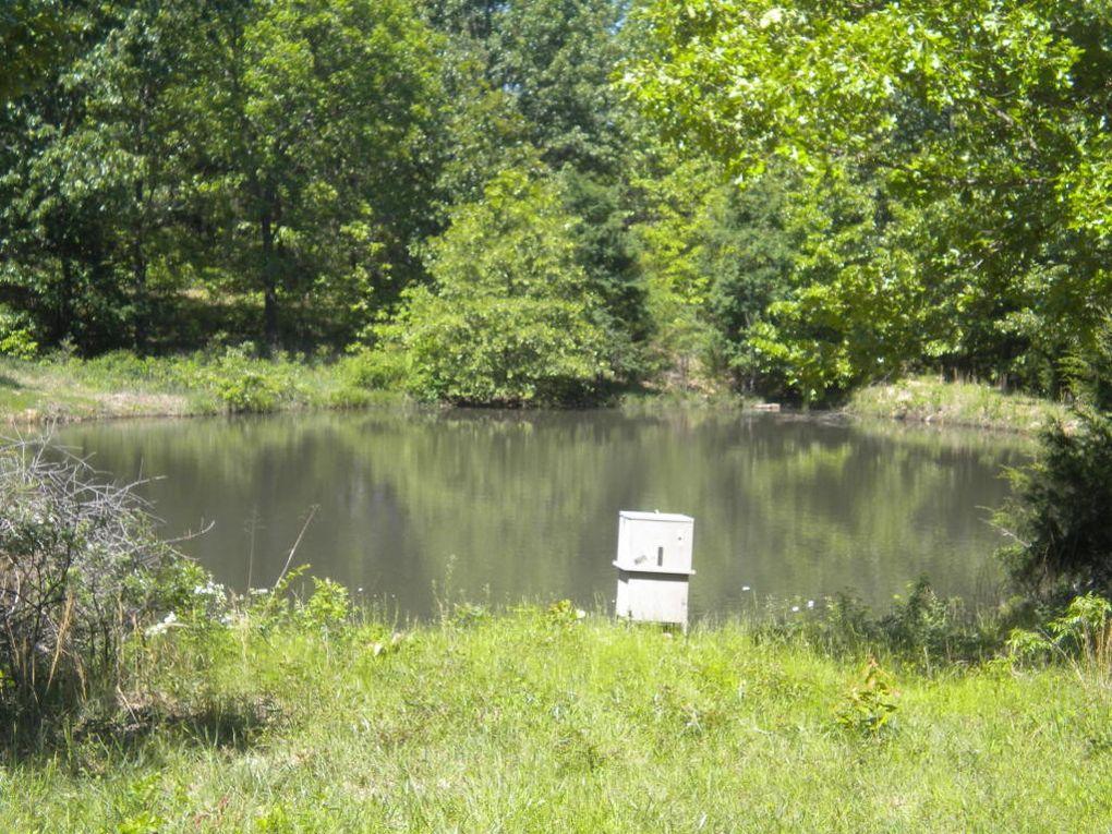 Douglas County Mo Property Records