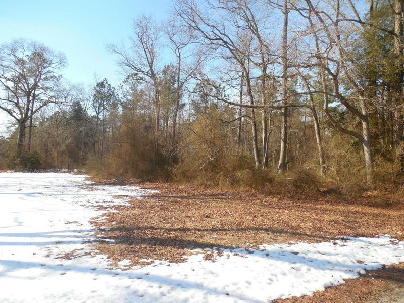 holt rd parsonsburg md 21849 land for sale and real estate listing