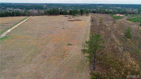 Tuscaloosa Al Land For Sale Real Estate Realtorcom