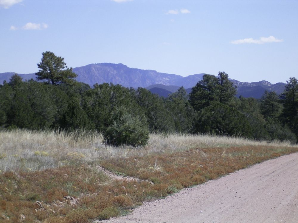 1384 elkhorn rd cotopaxi co 81223 land for sale and