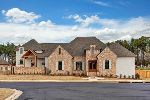 Cool Reunion Madison Ms New Homes For Sale Realtor Com Download Free Architecture Designs Sospemadebymaigaardcom