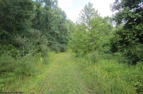 Photo of 886 Jackson Mill Rd, Jane Lew, WV 26378