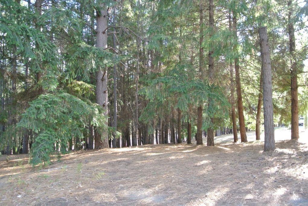 4535 Porta Venare Ct Foresthill, CA 95631