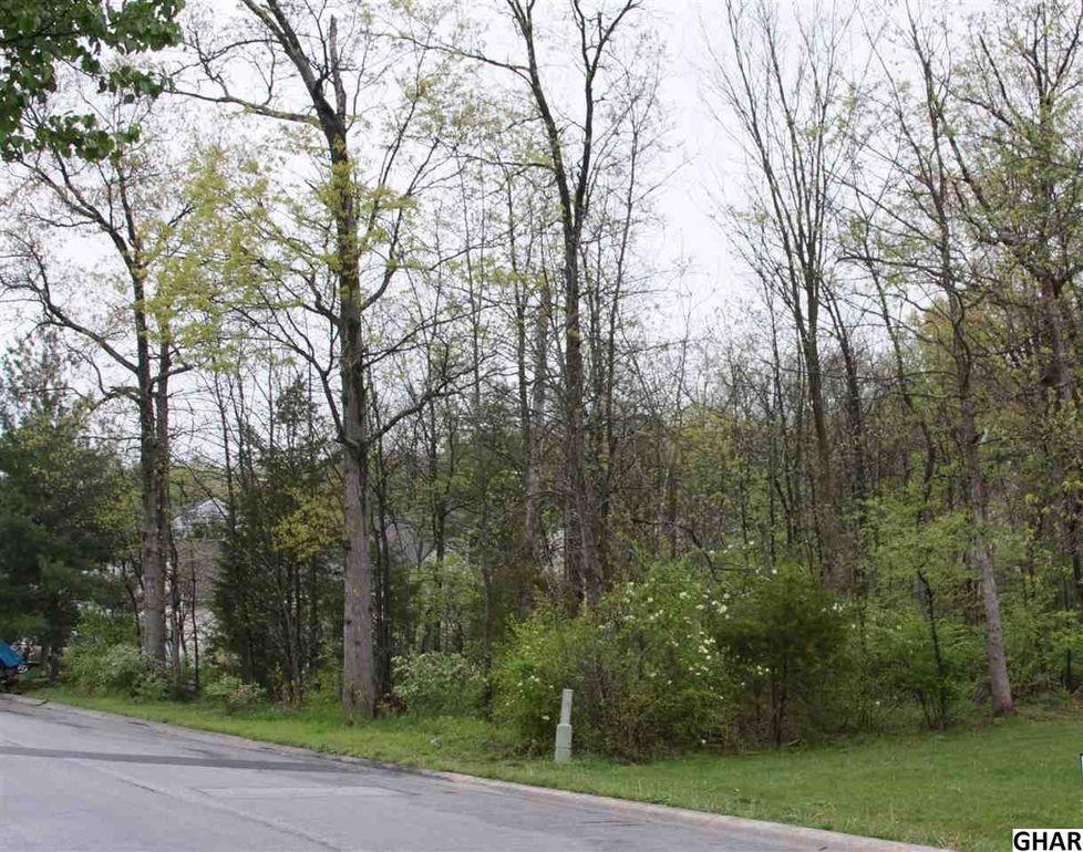 155 Twin Lakes Dr Gettysburg Pa 17325 Realtor Com 174