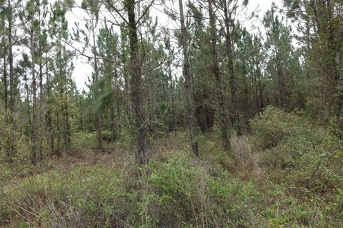 Photo of County Road 121, Bryceville, FL 32009