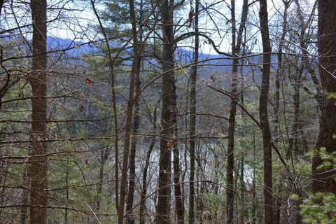 Photo of Cove Trl, Robbinsville, NC 28771