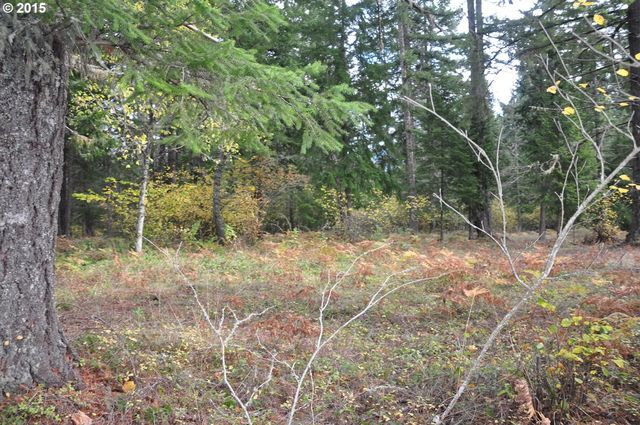 mountain view rd oakridge or 97463 land for sale and real estate listing