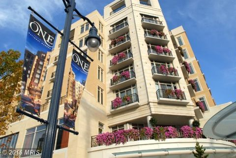 Apartments For Rent National Harbor Md