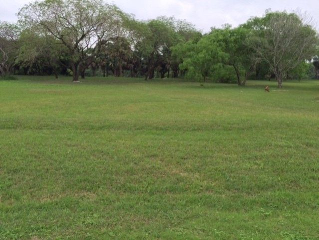 6184 w lakeside blvd olmito tx 78575 land for sale and