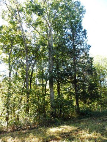 Photo of 26 34 Acres Bruners Ln, Mackville, KY 40040