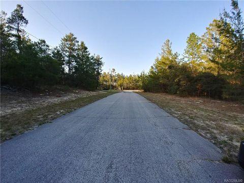 Photo of 7625 N Firwood Cir, Citrus Springs, FL 34433