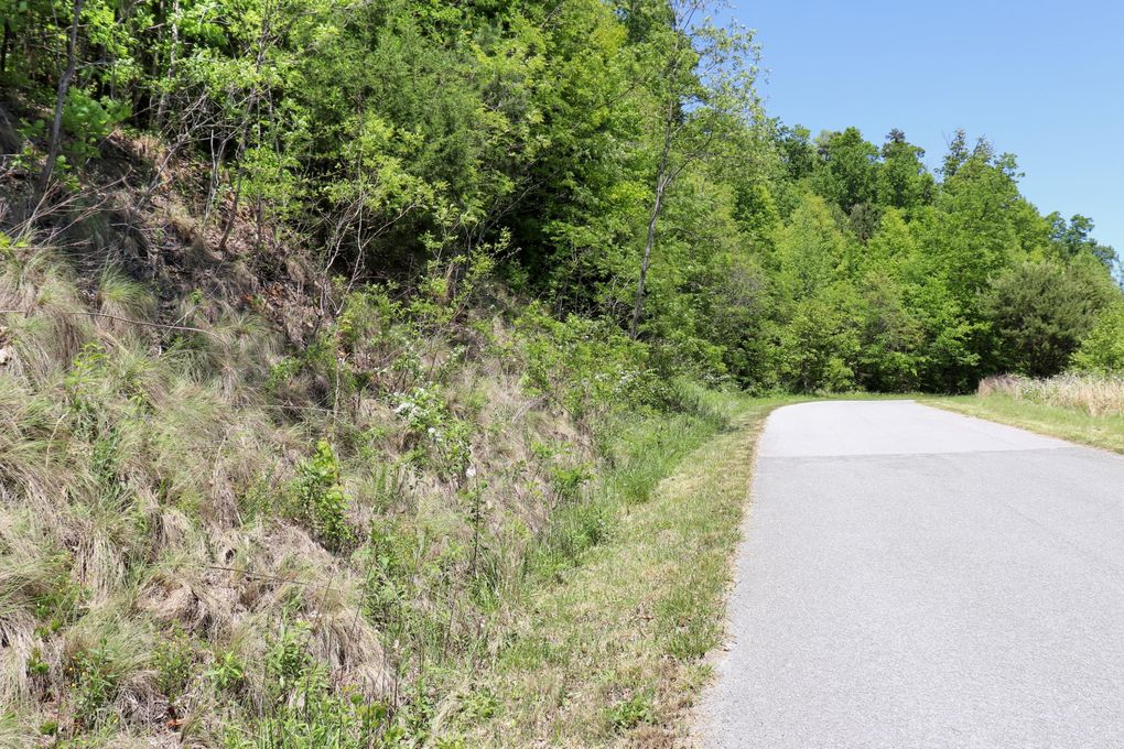 Whistle Valley Rd Lot 554 New Tazewell, TN 37825