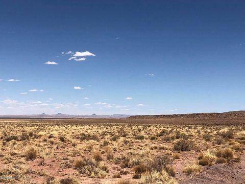 Photo of 8937 W Willauer Ln, Winslow, AZ 86047